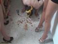 feet-feeding-2