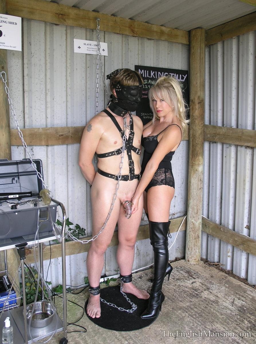 Milking a slave