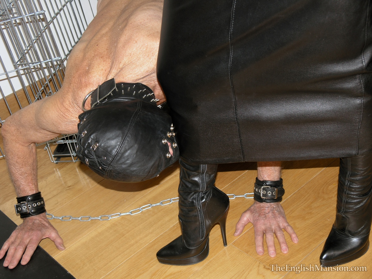 slave-training-degradation-02