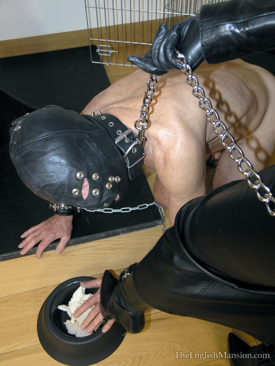 slave-training-degradation-06