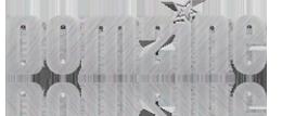DomZine