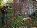 owk-outdoors-femdom-20